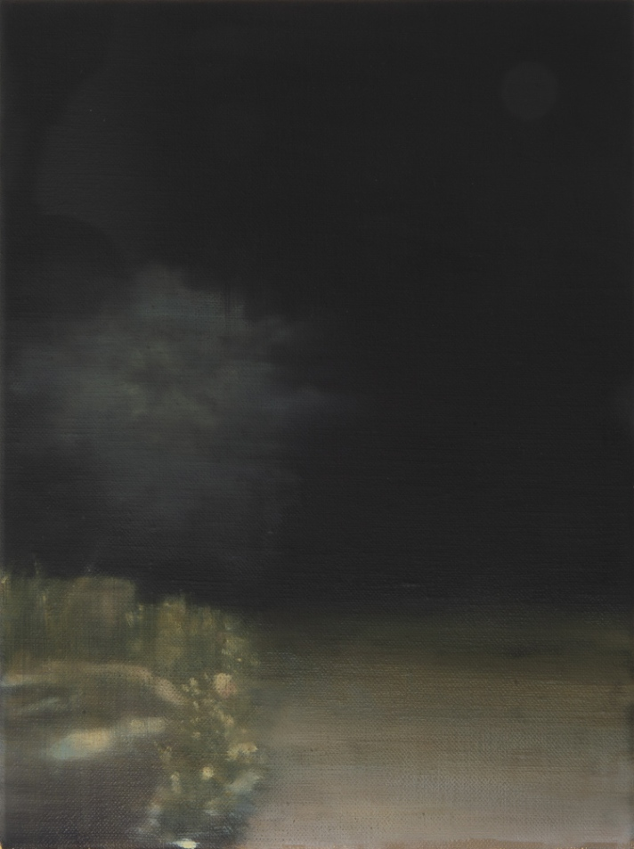 Kate Wallace - Pictures - Alternating Current Art Space- View of Driveway 2 LR
